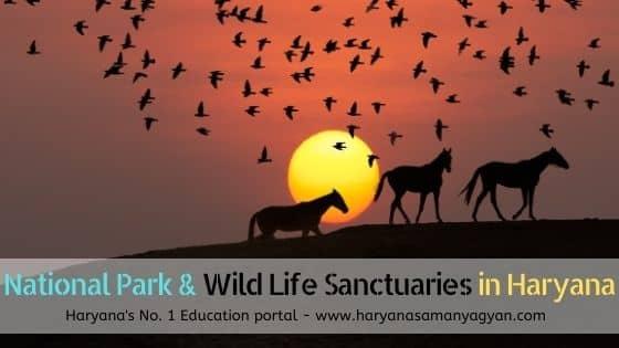List of National Park & Wild Life Sanctuaries in Haryana - हरियाणा में वन्य जीव संस्थान