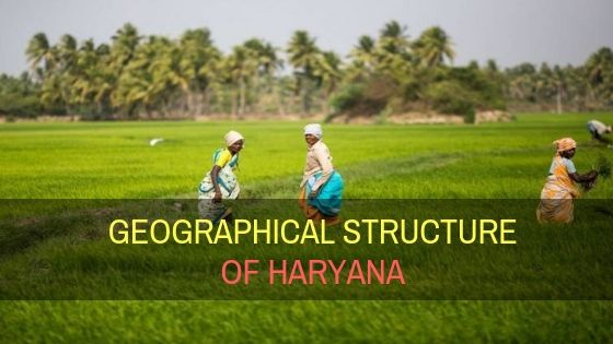 Geographical structure of Haryana