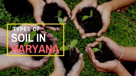 Types of Soil in Haryana - हरियाणा प्रदेश की मिट्टी के प्रकार